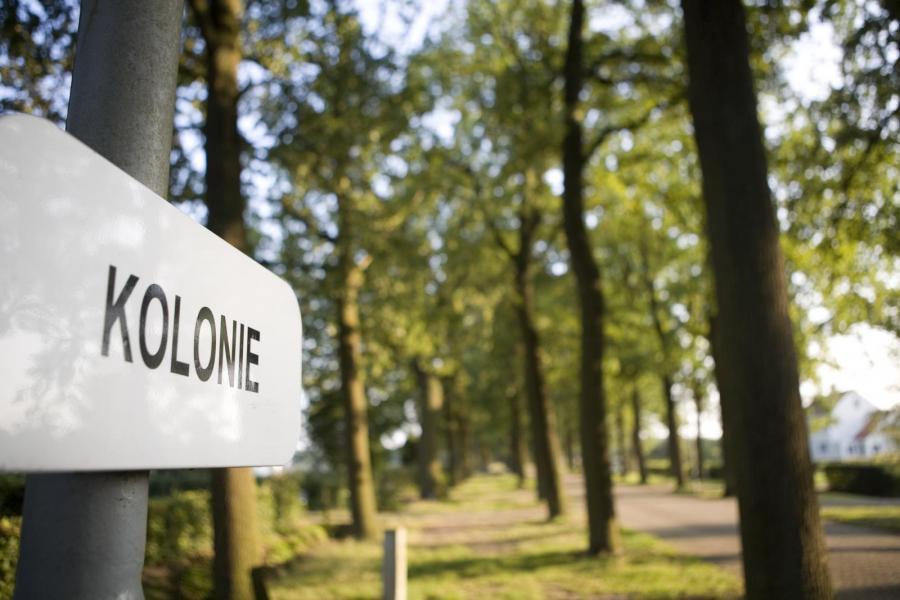 Wortel-Kolonie | foto: TPA