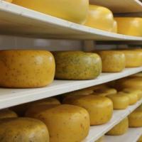 Kaas en zuivelproducten - De Meirhoeve