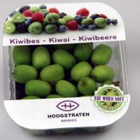 Kiwibessen