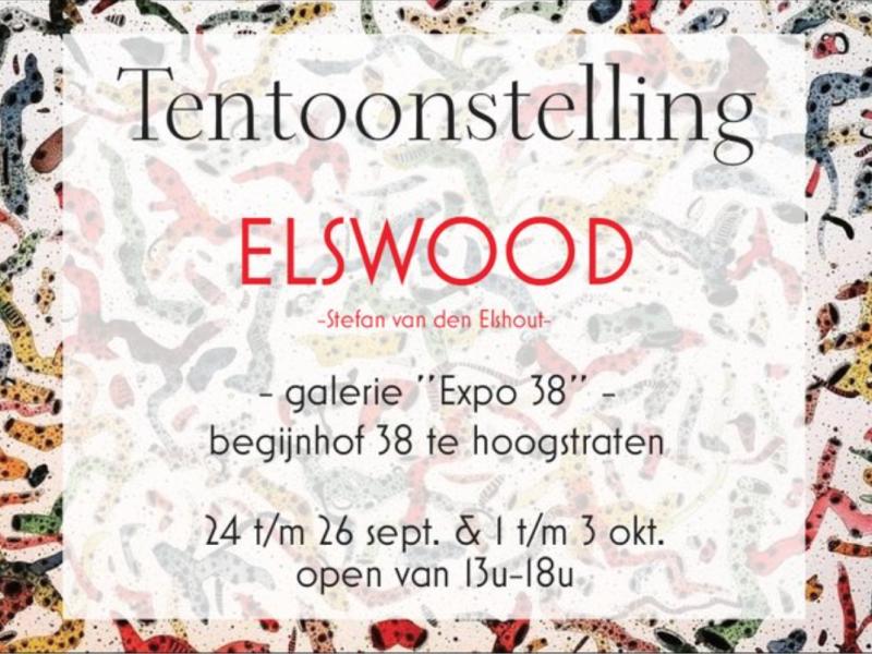 Flyer Elswood © Stefan van den Elshout