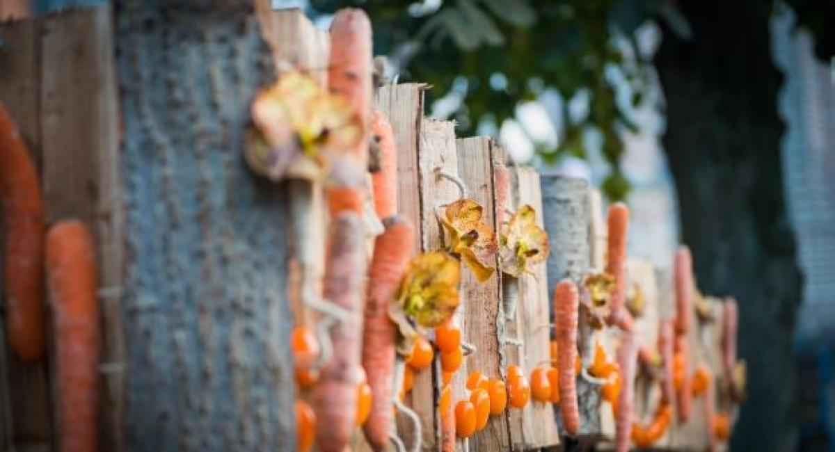 Hoogstraten in groenten & bloemen