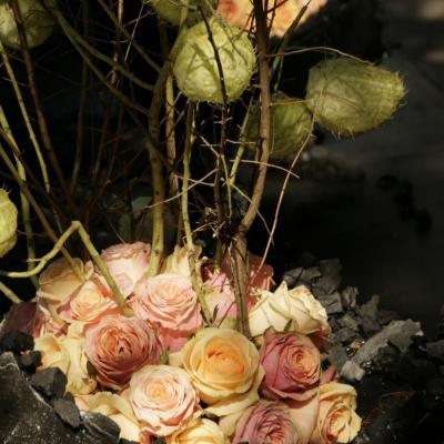3de prijs fotowedstrijd Hoogstraten in groenten & bloemen: Dirk Van Vaerenbergh
