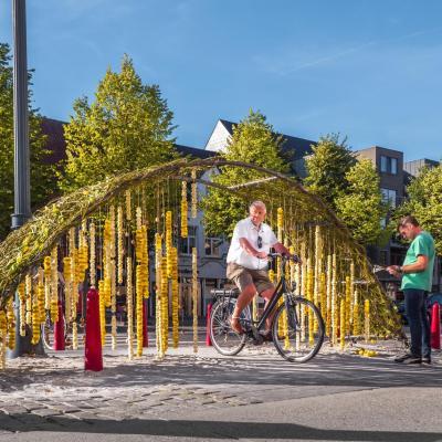 Hoogstraten in Groenten & Bloemen 2018 - Foto: G. Philippeau