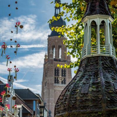 Hoogstraten in Groenten & Bloemen 2019 - Foto: G. Van Meirvenne